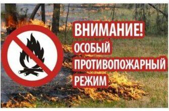 В Амгинском улусе Якутии действует особый противопожарный режим