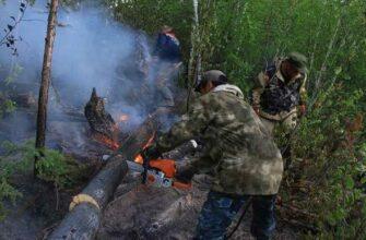 """На территории национального природного парка """"Ленские столбы"""" Якутии возник лесной пожар"""