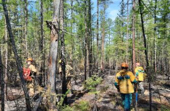Режим ЧС из-за лесных пожаров действует в четырех районах Якутии