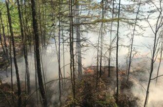 Иннокентий Андросов: Обстановка с пожаром возле Хандыги вновь стабилизируется