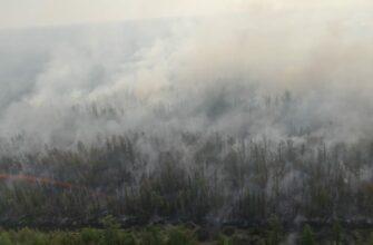 Оперативный штаб Якутии: На всей территории республики действует особый противопожарный режим