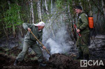 Глава Якутии предложил надзорным органам по поводу лесных пожаров работать по запросам