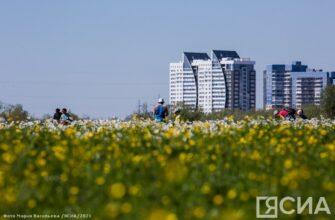Жаркая погода в Якутске будет стоять до четверга