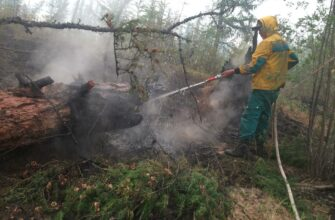 В Якутии тушат 69 лесных пожаров, ликвидировали 11