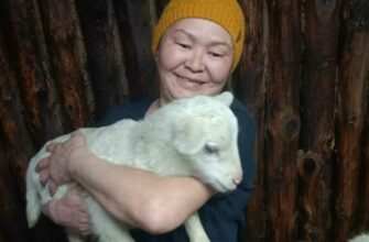 Супруги Уваровские: Села Якутии спасет развитие личного подсобного хозяйства