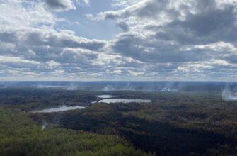 В Якутии тушат 10 лесных пожаров, за сутки ликвидировали четыре