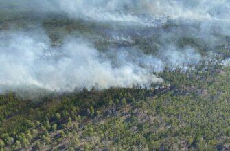 «Полярные авиалинии» обеспечивают тушение лесных пожаров в Томпонском районе