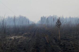 Грозовой фронт принёс в Якутск дым пожаров в Горном и Хангаласском районах