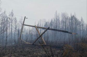 Энергетики продолжают работы на линии передач в Нюрбинском районе, пострадавшей от лесного пожара