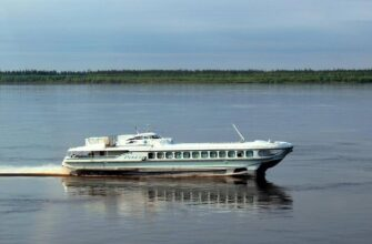 Оформить лицензию для перевозки пассажиров на водном транспорте в Якутии можно через Госуслуги
