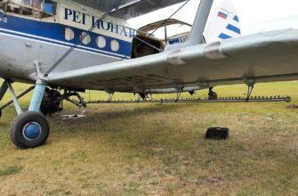Очаги сибирского шелкопряда в лесах Хангаласского улуса Якутии обрабатывают с помощью авиации