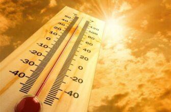 Как спастись от жары. Советы врачей