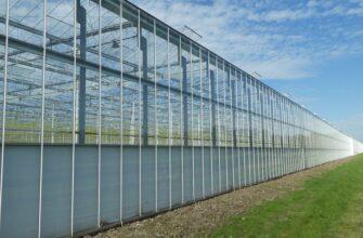 Якутская компания инвестирует в проект строительства тепличного комплекса в Бурятии