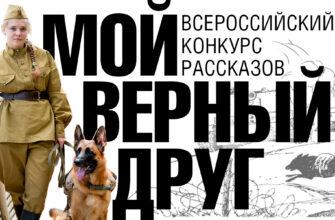 Юным жителям Якутии предложили написать рассказ о своем четвероногом друге