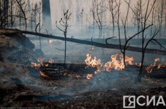 В Якутии наиболее сложная обстановка по лесным пожарам наблюдается в Горном районе