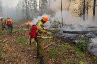 """Руководитель ГБУ """"Авиалесоохрана"""": Профессия парашютиста-пожарного относится к особо опасным"""