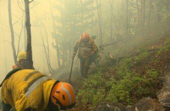 В Якутии тушат 65 лесных пожаров в 15 районах республики