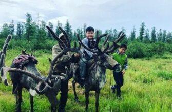 В Якутии 18 родовых общин получат субсидии на организацию летней занятости детей