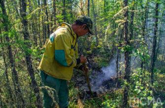 В Якутии ликвидировали 12 лесных пожаров