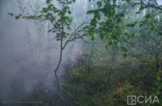 В Ленском районе Якутии наблюдается задымление из-за лесных пожаров