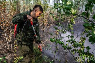 Лесные пожары тушат в трех районах Якутии