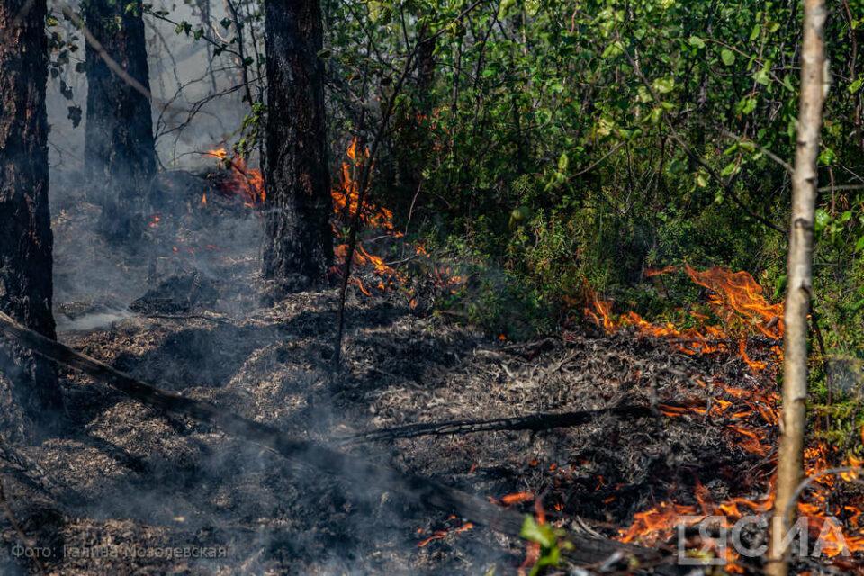 На тушении пожара у поселка Кыллайы работают 136 человек и 16 единиц техники, им помогут вертолеты