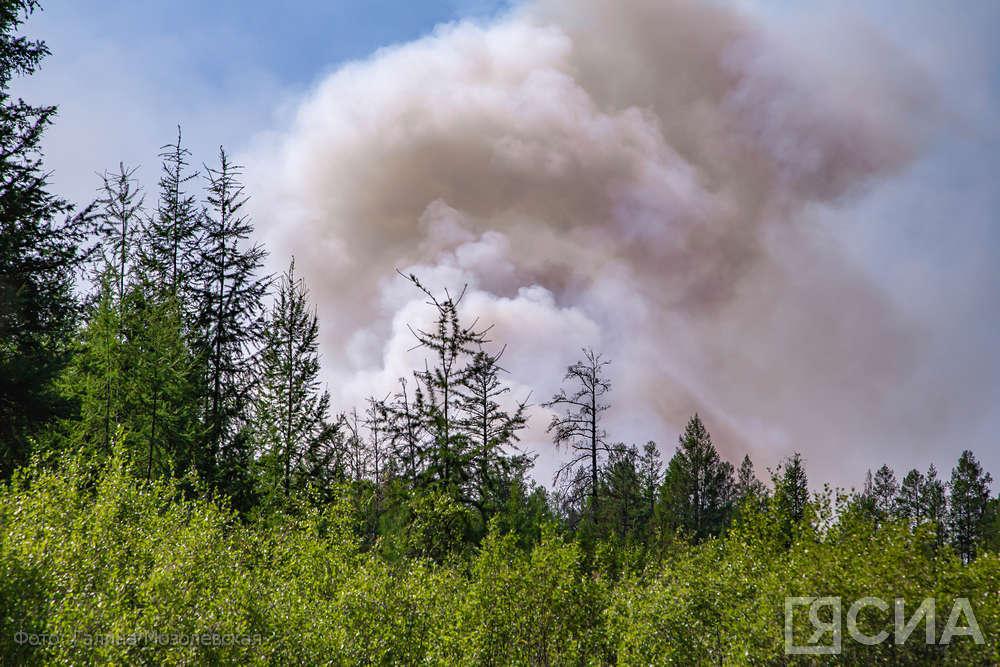 В Якутске рядом с городской свалкой обнаружен лесной пожар