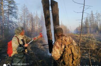 На линии огня. Как энергетики Якутии не дают пожарам погрузить республику во тьму