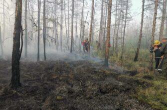 За сутки в Якутии ликвидирован 41 природный пожар