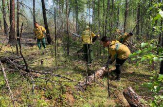За истекшие сутки в Якутии ликвидировано 43 пожара