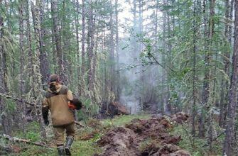 """Сергей Сивцев разъясняет, что подразумевается под термином """"лесной пожар под контролем"""""""
