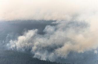 Эксперт: региональный лесопожарный центр усилит контроль за пожарной обстановкой в Якутии