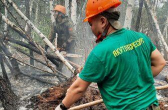 Мишустин: Значительную часть средств на борьбу с пожарами получит Якутия