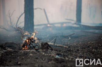 В Кобяйском районе Якутии возможен густой дым из-за встречных отжигов на лесных пожарах