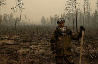 Сотрудники якутских театров собирают средства для борьбы с лесными пожарами
