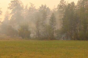 В Мегино-Кангаласском районе Якутии локализовано два лесных пожара