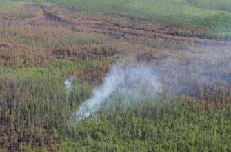 Аркадий Семенов: На тушении пожаров на Ленских столбах работают 150 человек, а не только Greenpeace