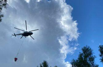 Глава Якутии отметил оперативную помощь федерального центра в тушении лесных пожаров