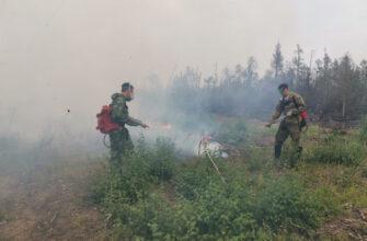 В Якутии наградили полицейских, участвовавших в ликвидации пожаров на территории Горного района