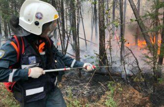 МЧС просит разрешить им тушить леса даже при отсутствии угрозы населению