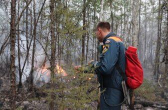 В Якутии действуют 178 природных пожаров, за сутки ликвидированы 7