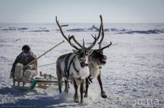 Проекты по развитию туризма в Булунском районе Якутии претендуют на федеральное финансирование