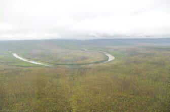 В лесах Мирнинского района Якутии на сегодня пожаров нет