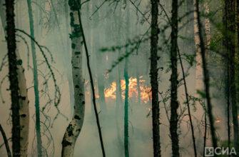 В Якутии осуществляется переброска сил и средств на пожары в Усть-Майском районе