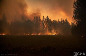 О сборе средств для помощи жителям республики, пострадавшим от лесных пожаров