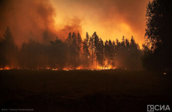 Огонь и ветер. Репортаж ЯСИА с пожара у села Бясь-Кюель