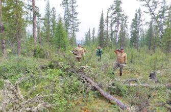 Бойцы Авиалесоохраны локализовали лесной пожар в Мирнинском районе Якутии