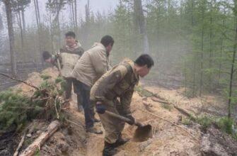 Более 1,2 тысяч добровольцев тушили пожары в Якутии - штаб