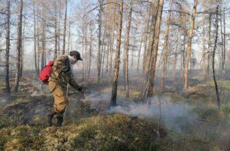 В Якутии за сутки ликвидировано 6 природных пожаров