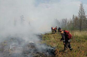 В Якутии за сутки ликвидировали три природных пожара